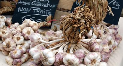 83_garlic