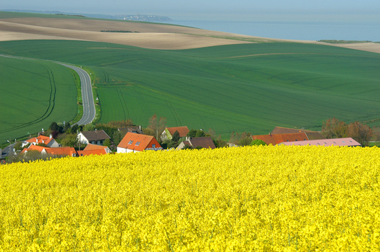 The Region of Hauts-de-France