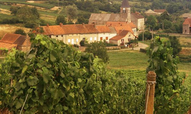 The Region of Burgundy-Franche-Comté