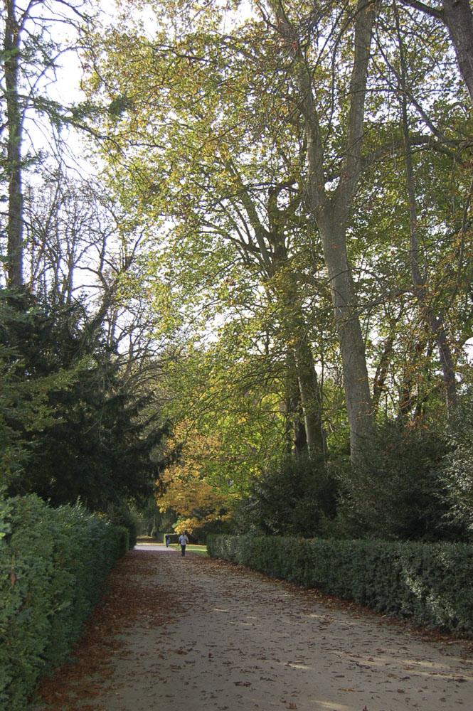 77_Fontainebleau1091