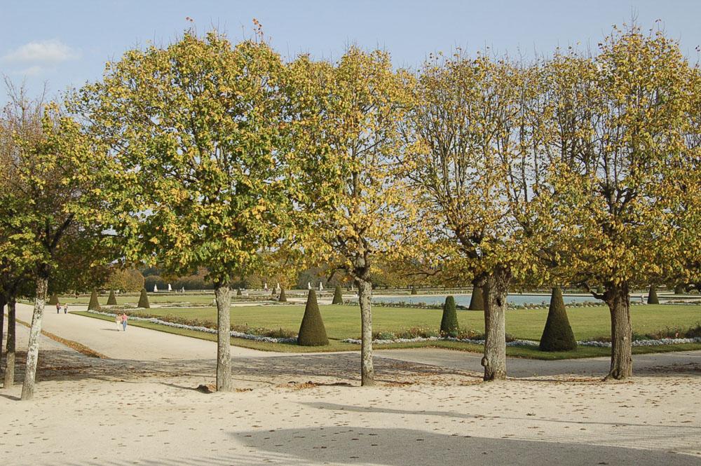 77_Fontainebleau1102