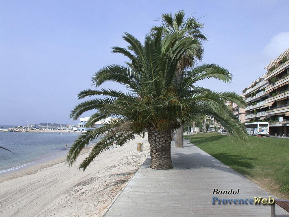 83_Bandol683