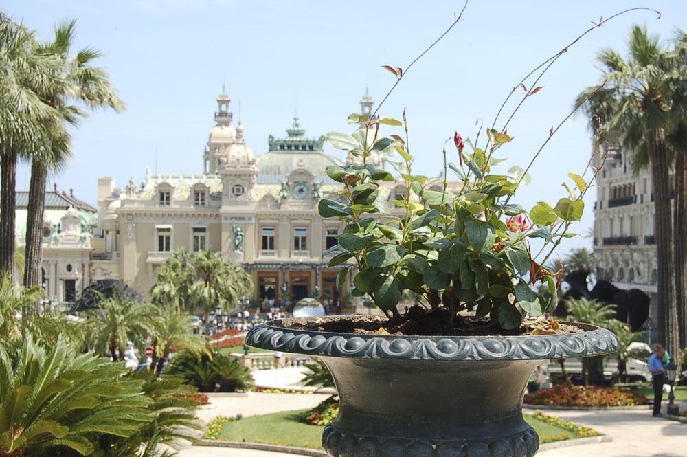Monaco1552