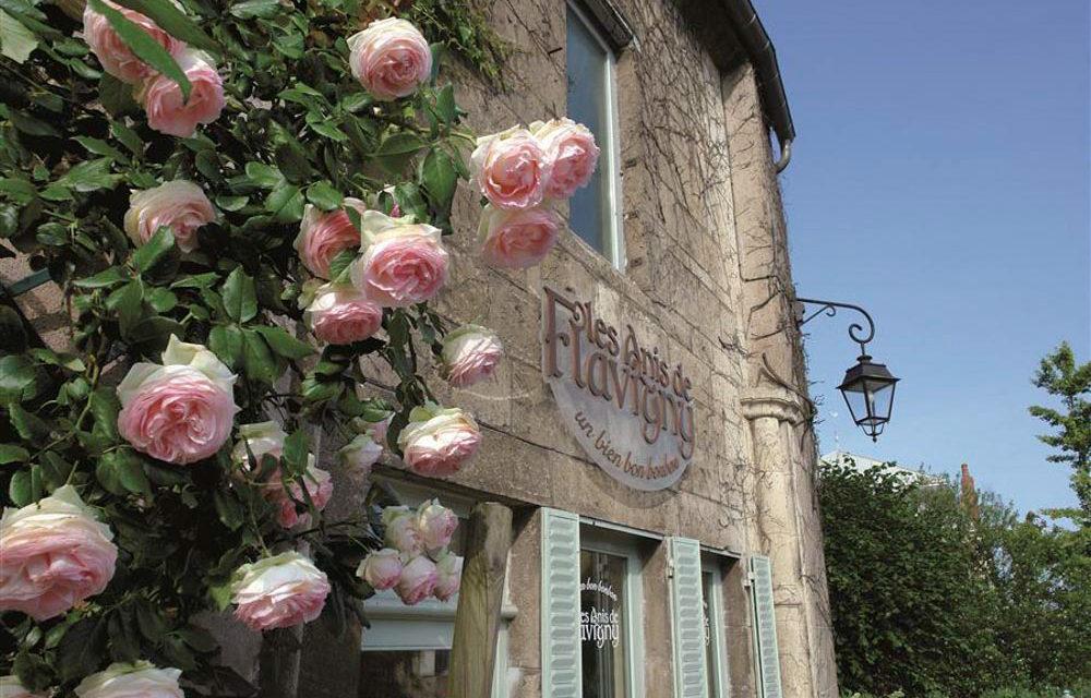 23. Les Anis de Flavigny in Flavigny