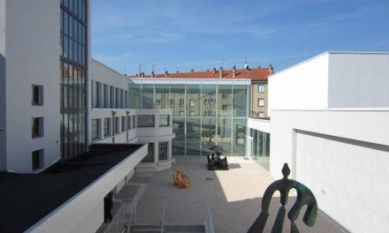 6. Consortium Museum in Dijon