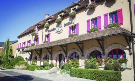Villa Loiseau